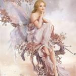 Fairy 2012